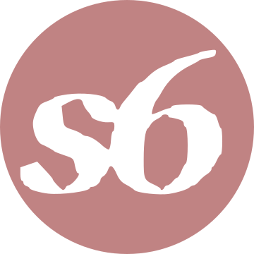 3 s6 logo